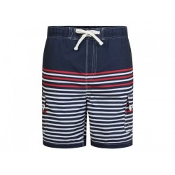 Stripe Swim Shorts Blue